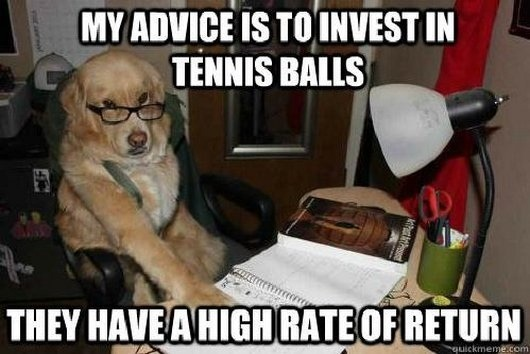 funny-dog-tennis-ball-investment-advice-investwithalex
